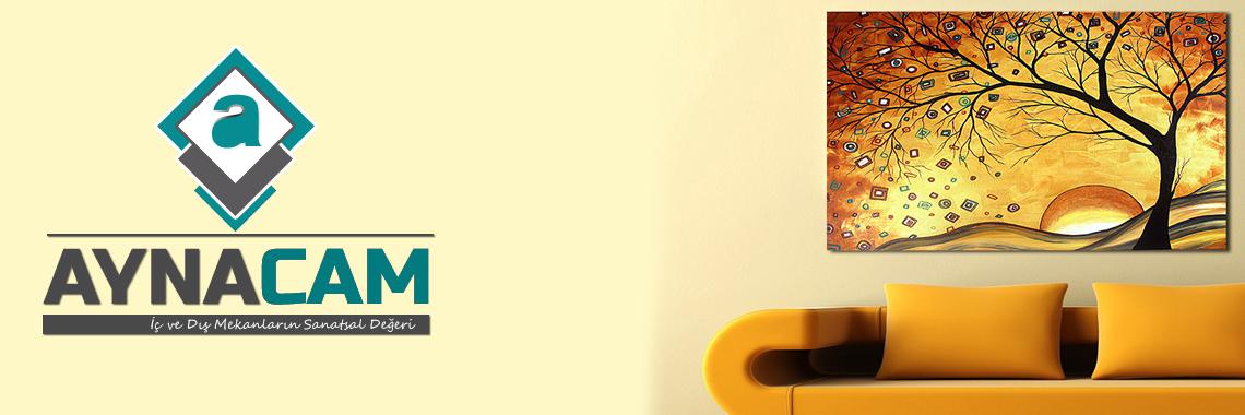 Aynacam Logo ve E-ticaret