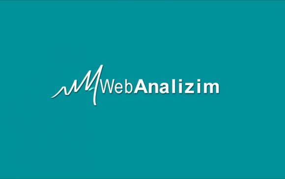 Web Analizim Logo
